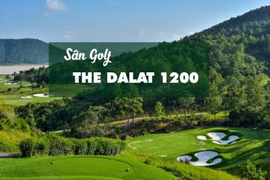 Bảng Giá, Voucher Sân Golf The DALAT 1200 Đà Lạt