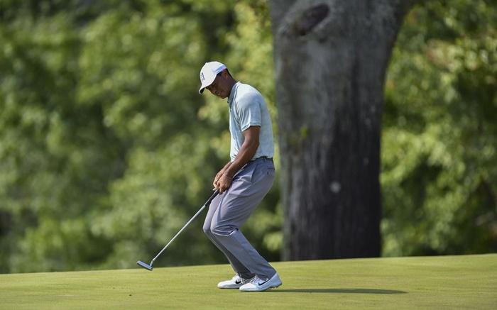 Tiger Woods sử dụng lực hợp lý trong các cú gạt bóng golf