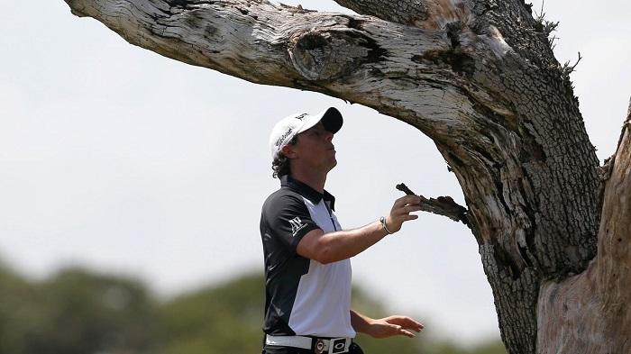 cây sồi nổi tiếng ở sân golf Ocean Course