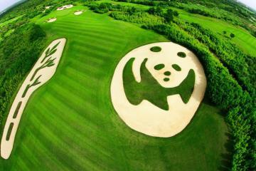 Đi bộ mỏi chân ở sân golf lớn nhất thế giới tại Trung Quốc